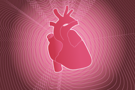 Lifestyle is at the heart of heart health