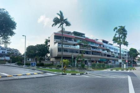 Changi Garden condominium site up for collective sale