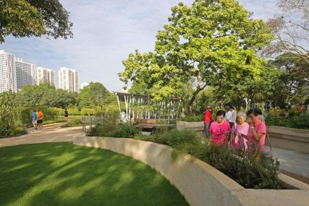 Therapeutic garden to improve mental well-being