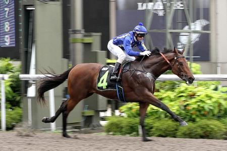 Augustano gears up for his hat-trick