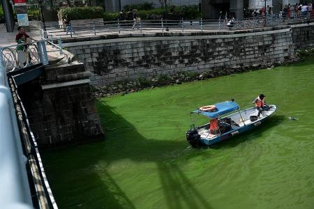 Singapore River goes green