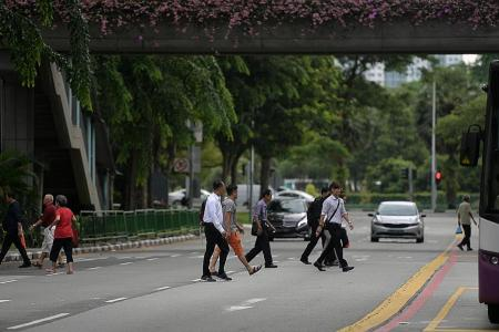Jaywalking accidents up 21%, more elderly involved