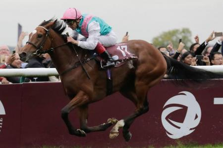 Arc winner Enable to remain in training next year