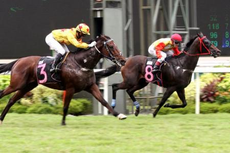 General Conatus gives trainer KS Tan first winner