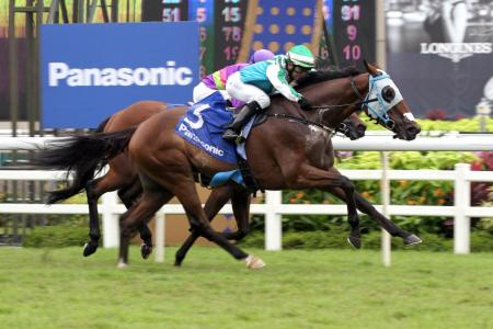 Infantry out of Raffles Cup but Gold Cup agenda on