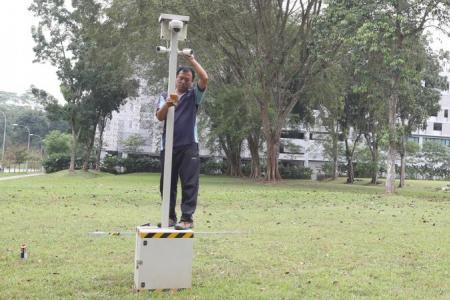 Surveillance cameras installed after wild boar incidents