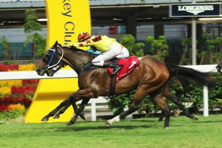 Southern Legend gives Rawiller a treble