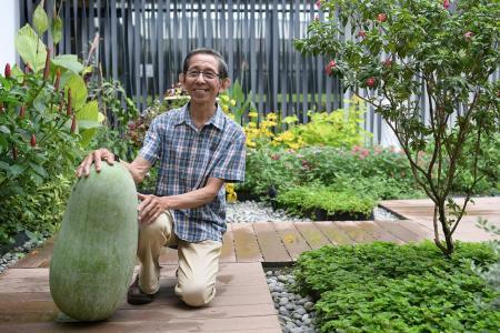 Building gardens, grooming gardeners