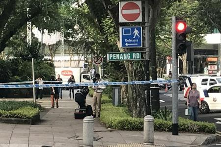Suspicious object at Istana Park identified as toy hand grenade