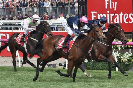 It's an Irish trifecta as Rekindling wins Melbourne Cup