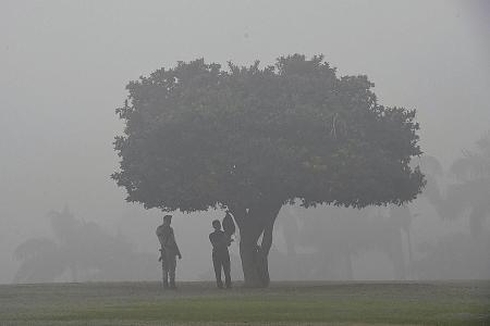 Hazardous smog chokes New Delhi