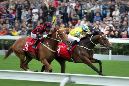Werther signals HK Cup hope