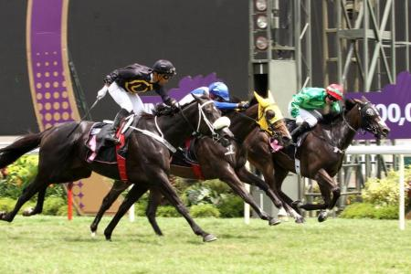 Mighty Kenny could be Le Grange's Colonial Chief Stakes hope