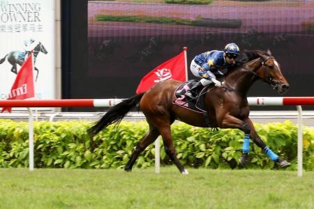 Lim's Casino worth the gamble