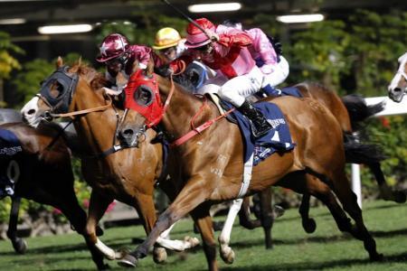 Purton takes title and  Hong Kong celebrates