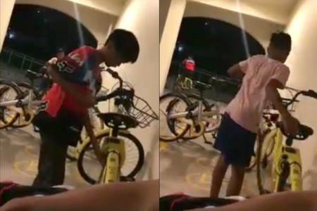 Boys filmed damaging locks on ofo bikes