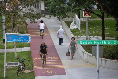New red bike paths open in Bedok