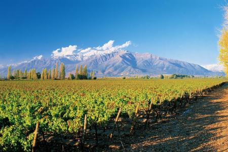 It's time for Chilean wine