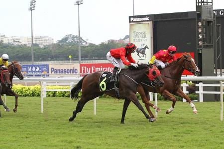 Queen Roulette makes lively outsider
