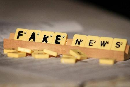 Schools join fight against fake news
