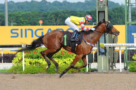 Guide to yesterday's Ipoh trackwork