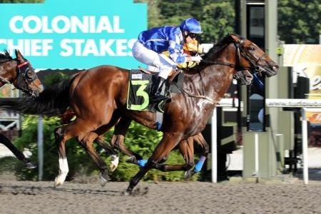 Tannhauser on target for fifth straight win