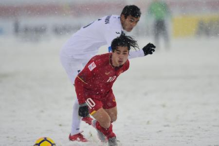 Brave Vietnam sunk by late goal in snow-hit final