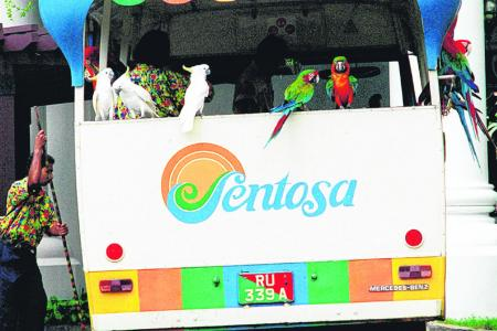 Trademark fight over use of the word 'Sentosa'