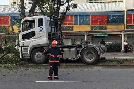 Prime mover driver arrested for drink driving