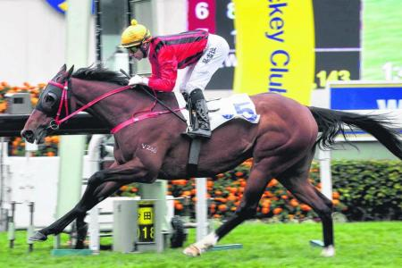 Dinozzo notches his second victory in four days by capturing the Group 3 Centenary Vase Handicap at Sha Tin on Sunday
