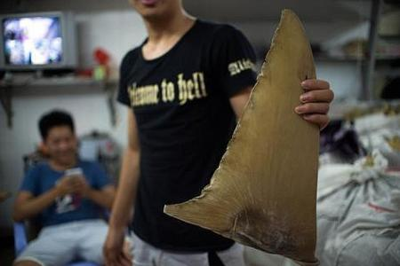 Some local F&B outlets to take shark's fin off their menu