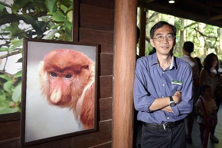 Confessions of a zoo exhibit designer