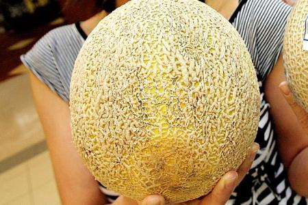 Contaminated rockmelons from Australia recalled