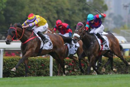 Jockey Ryan Moore driving Ping Hai Star clear of Singapore-owned Singapore Sling (jockey in blue cap) in the BMW Hong Kong Derby at Sha Tin on Sunday