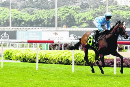 Two-from-two winner Quarter Back leaving his rivals stranded at Kranji on Sunday