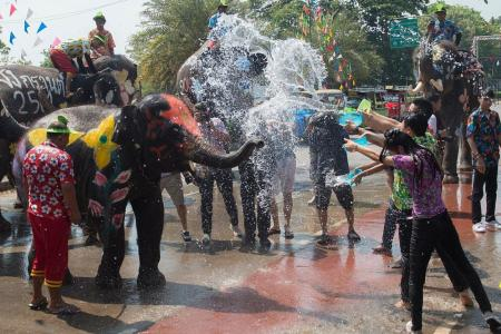 Elephant water battle heralds Thai New Year