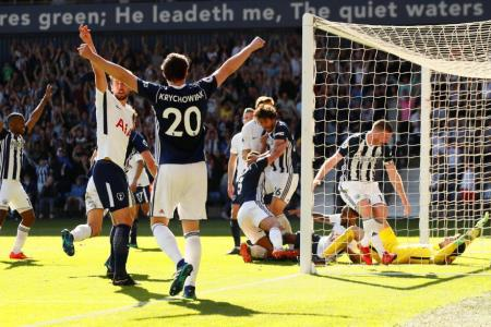 West Brom live to fight another day