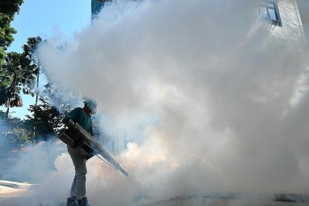 Fogging not very effective, says dengue expert