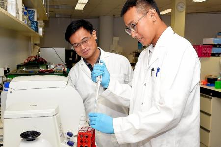 TP student helps advance HIV research during internship