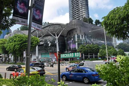 Orchard vacancy rates down to 5.6%