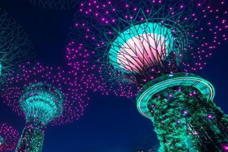 Lively mix of events to help you celebrate SG53