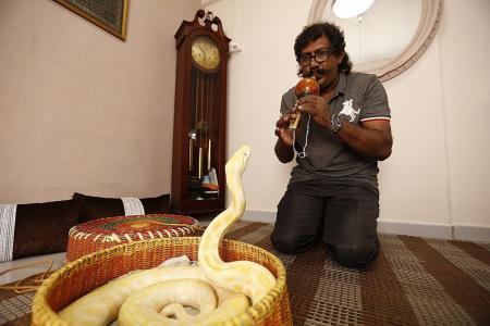 He leads a snake-charmed life