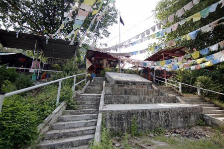 Man finds remains of his late grandparents' home on Ubin