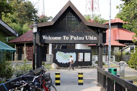 Keeping Pulau Ubin alive