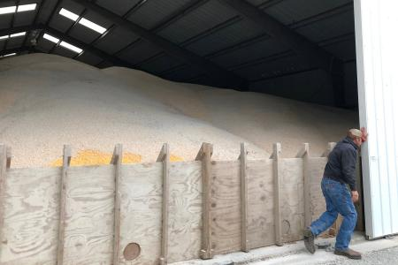 US crops rot as trade war raises storage costs