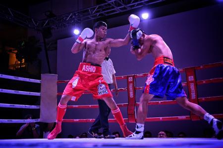 Muhammad Ashiq WBC Lion City Fury