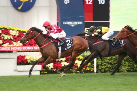 The Frankie Lor-trained Mr Stunning making it back-to-back in the Hong Kong Sprint at Sha Tin yesterday.