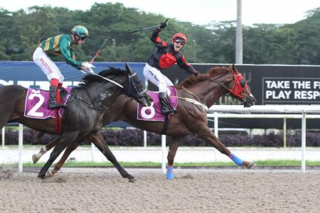 Maximus eyes New Year Cup