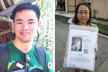 Strangers from over Singapore came together to search for missing dog