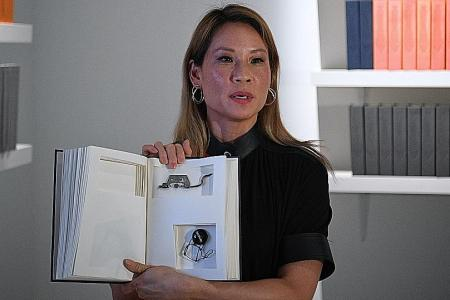 Lucy Liu collaborates with Singapore artist for exhibition here